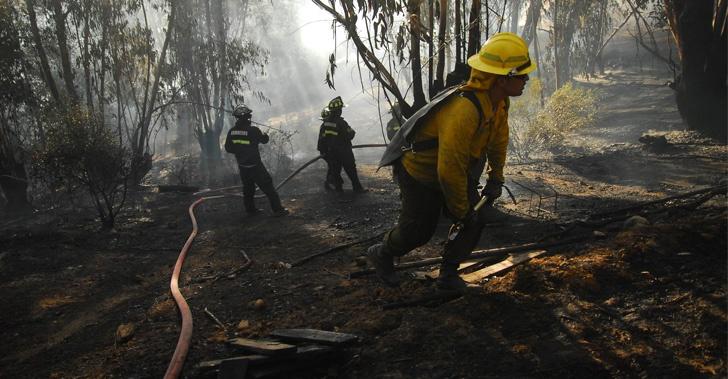 bomberos, incendios, chile, universidad católica, emprendimiento, tecnología, fuego, pulsera