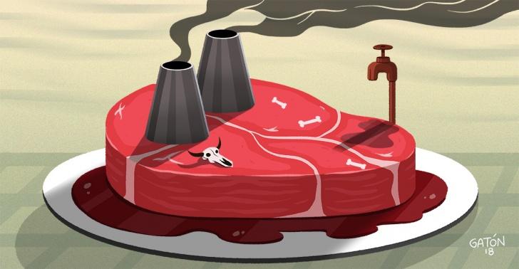 carne, industria ganadera, contaminación, calentamiento global, proteínas, alimentación, vegetariano