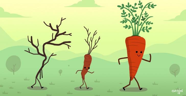 comida, alimento, fruta, verdura, genetica, modificacion, domesticar, cambio, historia