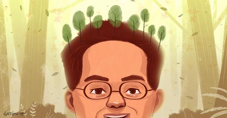 árboles, cambio climático, joven, plantar, niños