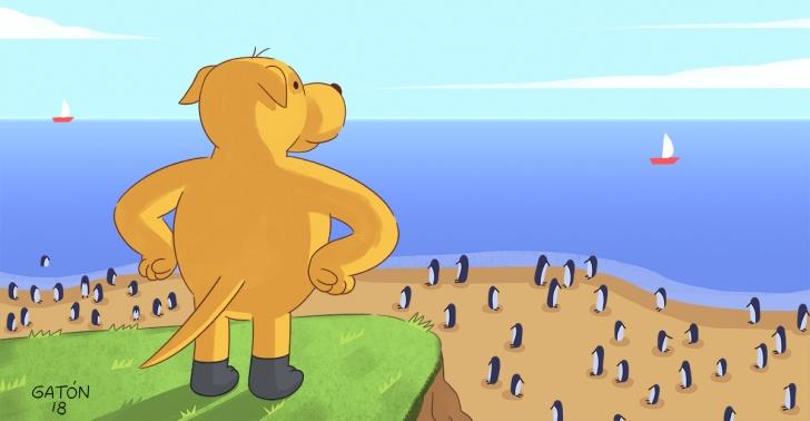 finn, isla, choros, chañaral, conaf, pingüinos, perro, reserva, humboldt, conservación, plagas, pinguinos, conejos.