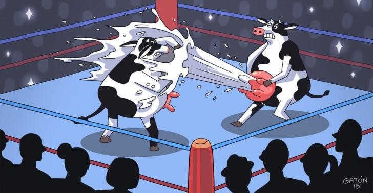 leche, guerra de la leche, guerra blanca, caso colun, soprole, nestlé, watts, industria láctea