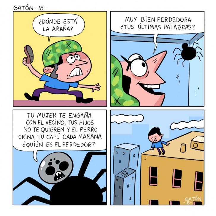 araña, miedo, spider, traición, aracnido, gaton