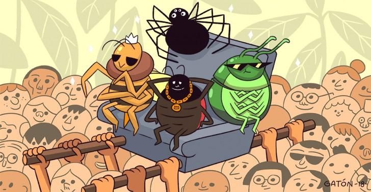 ecología, medio ambiente, ciencia, insectos, ong, estudio, chile, fauna, cambio climático, calentamiento global