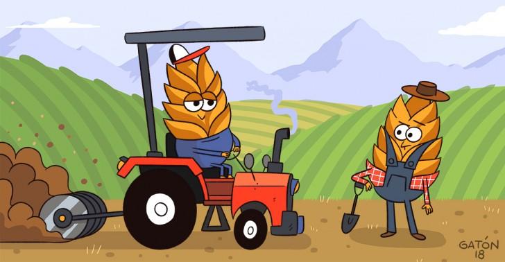 agricultura, orgánica, tradicional, impacto ambiental