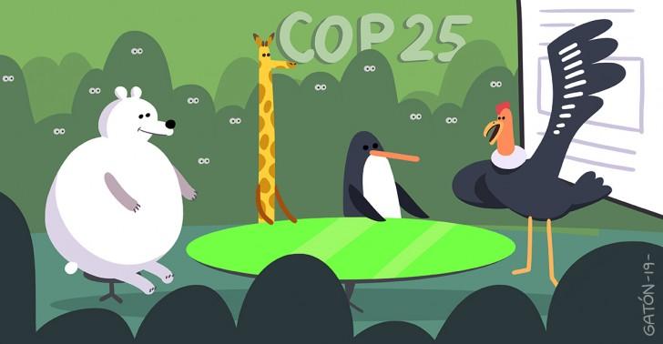 COP25, Chile, Gonzalo Muñoz, cambio climatico, acciones, medidas, calentamiento global