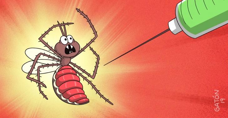 malaria, vacuna, África, mosquito, salud, OMS, erradicación