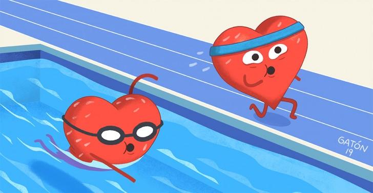 Salud, Corazón, Natación, Atletismo, Estudio, Ventrículo Izquierdo