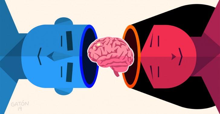 ciencia, cerebro, comportamiento, mente, personalidad, género, mujeres, hombres